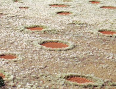 i-cerchi-delle-fate-nel-deserto-in-namibia