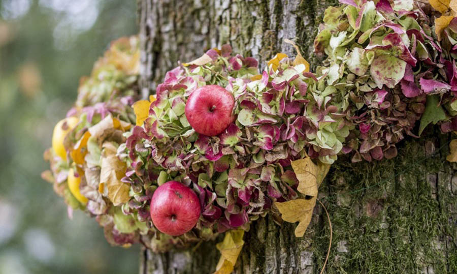 autunno-a-Cervignano-del-Friuli